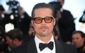 Picture glasses, Brad Pitt, actor, Brad Pitt, beard