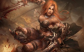 Picture weapons, woman, chain, Barbarian, Diablo-III