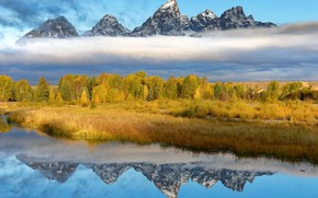 Picture nature, Wyoming, Grand Teton National Park