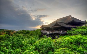 Picture roof, greens, forest, morning, Japan, Kyoto
