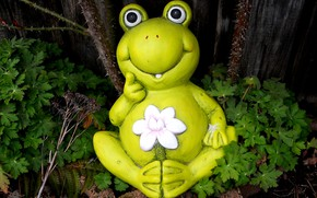Picture flower, frog, figurine