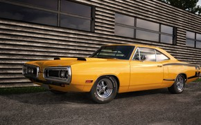 Picture Dodge, Front, Coupe, Coronet, Yellow, Muscle car, Hardtop, Custom, Super Bee, Vehicle
