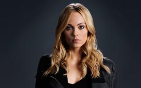 Picture look, girl, face, photo, hair, portrait, actress, blonde, Laura Vandervoort