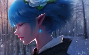 Picture forest, girl, snow, elf