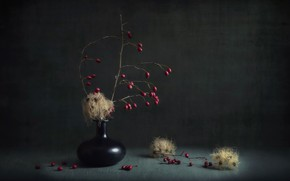 Picture berries, background, vase