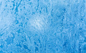 Picture frost, glass, pattern, ice, window, frost