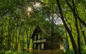 Picture photo, Nature, The fence, Trees, Austria, House, Carinthia, Rays of light