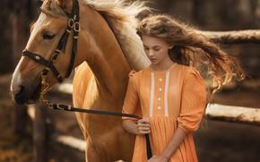 Picture hair, horse, Girl, dress, Anastasia Barmina, Catherine Pasynkova