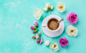 Picture background, blue, roses, Cup, buds