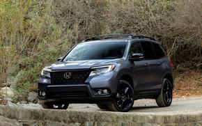 Picture Honda, SUV, 2019, Passport