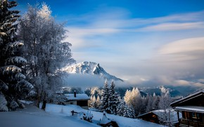Picture winter, clouds, snow, trees, landscape, mountains, nature, village, home, Switzerland, valley, Rosswald