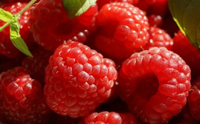Picture light, berries, raspberry, red