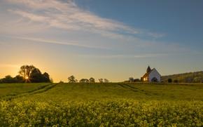 Picture field, summer, the sky, flowers, spring, yellow, meadow, Church, chapel, rape, rapeseed field