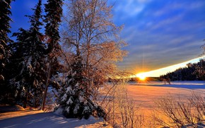 Picture winter, forest, the sun, rays, snow, trees, landscape, sunset, nature, ate, Canada, QC, Alain Audet