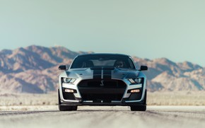 Picture road, machine, mountains, lights, Ford, sports, sports car, Ford Mustang Shelby GT500, 2020