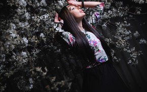 Picture girl, cherry, pose, spring, hands, brunette, flowering, long hair, flowers, Антон Владимирович