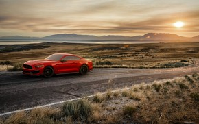 Picture Sunset, Mustang, Ford, Shelby, Red, Auto, Road, Machine, Ford Mustang, Rendering, GT350, Ford Mustang Shelby, …