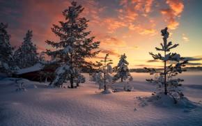 Picture Norway, Norway, Ringerike