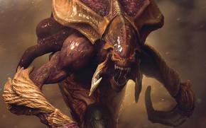 Picture monster, mouth, starcraft, zerg, Zerg, StarCraft, strategy, remastered