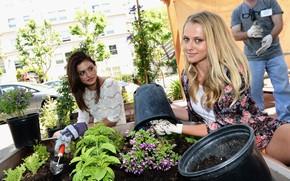 Picture look, girl, flowers, pose, earth, street, makeup, actress, two, hair, Phoebe Tonkin, Phoebe Tonkin, Teresa …