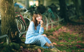 Picture leaves, girl, tree, Asian, bikes