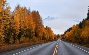 Picture road, machine, autumn, forest, asphalt, mountains, fog, the way, markup, dal, highway, car, the colors …