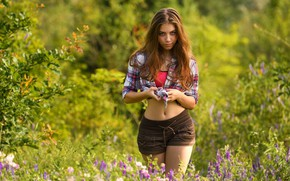 Picture greens, grass, look, the sun, flowers, model, shorts, portrait, makeup, figure, hairstyle, shirt, brown hair, …