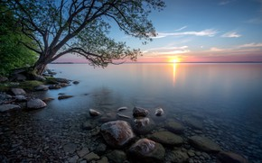 Picture the sun, sunset, river, stones, tree