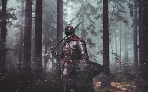 Picture forest, weapons, sword, armor, warrior, fantasy, shield, knight, the middle ages