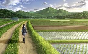 Picture road, field, girl, figure