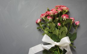 Picture gift, roses, tape, pink, buds