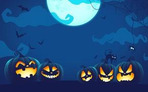 Picture spider, Halloween, moon, blue, night, cat, holiday, digital art, bats, pumpkins, black cat, spooky, spider …