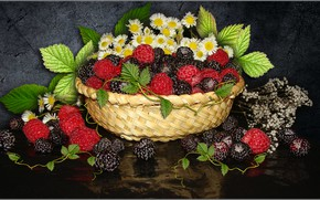 Wallpaper flowers, raspberry, chamomile, berry, still life, BlackBerry, the Wallpapers, photo Elena Anikina