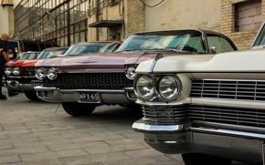 Picture Cadillac, cadilac, originalmeet