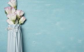 Picture flowers, background, blue, bouquet, vase, blue, flowers, vase, eustoma, eustoma