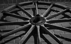 Picture metal, wall, tree, brick, wheel, black and white