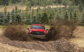 Picture trees, red, earth, Chevrolet, dirt, pickup, Silverado, Z71, Trail Boss, 2019, Silverado LT
