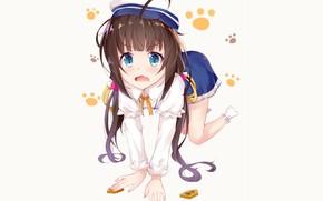 Picture girl, background, anime, girl, Ryuuou in Oshigoto!