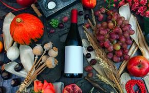 Picture wine, bottle, roses, Pumpkin, grapes, Still life, garnet