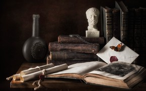 Picture head, items, books, bottle, Tom, composition, sculpture, still life, bust, scrolls