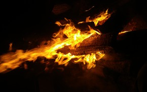 Picture Tree, Night, Fire, The fire, Fire, Flame, Coal, Burns, Red flame, Bonfire night, Log, Желтое …