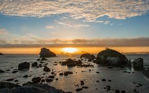 Picture sea, the sky, the sun, clouds, light, landscape, sunset, nature, stones, rocks, dawn, blue, shore, …