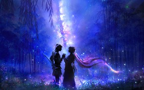 Picture forest, night, lovers, the milky way