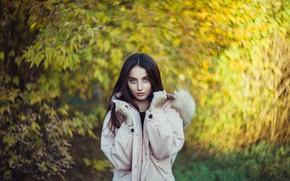 Picture look, girl, brunette, bokeh, Ilya Arte
