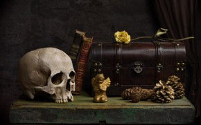 Picture rose, books, skull, angel, chest, bumps