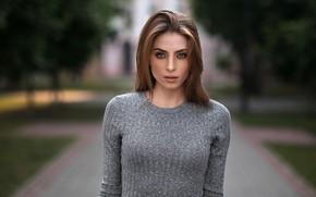 Picture trees, Park, model, portrait, brown hair, beauty, bokeh, Nadya, Dmitry Sn