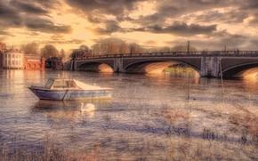 Picture bridge, river, Swan