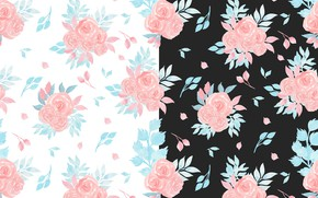 Picture white, flowers, background, black, texture, seamless