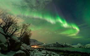 Picture winter, snow, night, Northern lights