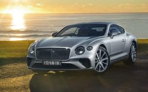 Picture Bentley, Continental, 2018, Bentley Continental, GT 2018, Bentley Continental GT 2018